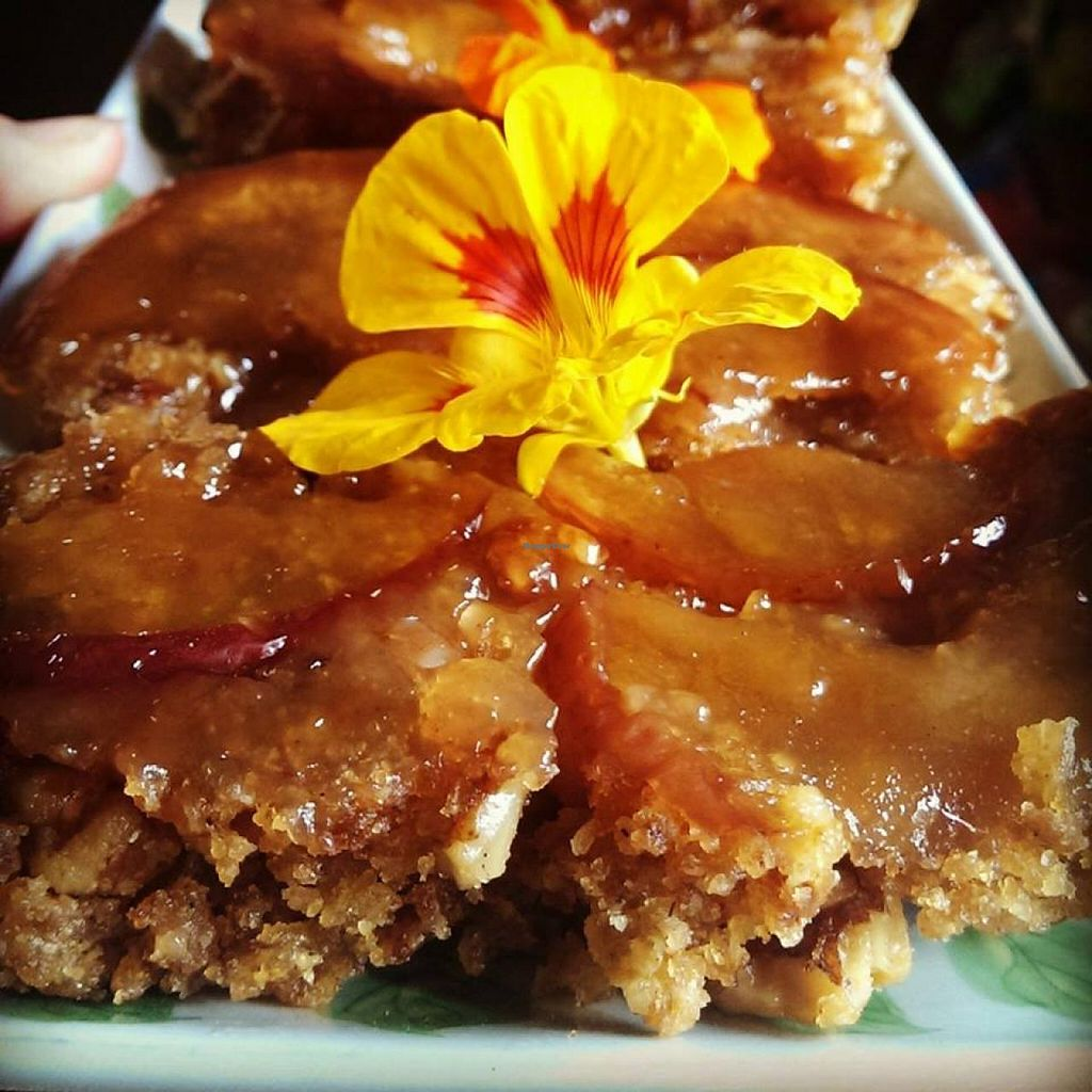 """Photo of Goodness Gracious Organic and Gluten Free Cafe  by <a href=""""/members/profile/vegan%20louise"""">vegan louise</a> <br/>vegan homemade toffee apple and walnut upside down slice <br/> July 16, 2014  - <a href='/contact/abuse/image/40933/74165'>Report</a>"""