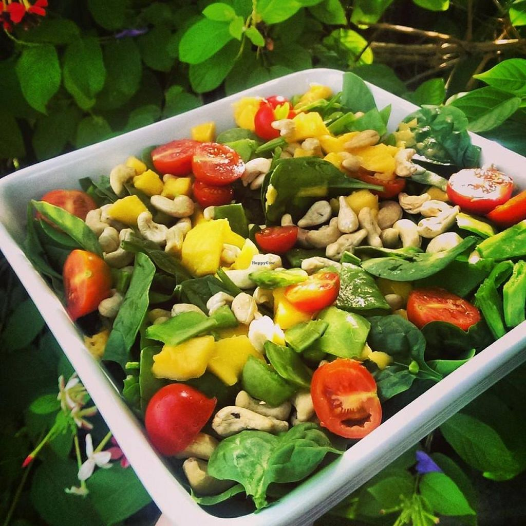 """Photo of Goodness Gracious Organic and Gluten Free Cafe  by <a href=""""/members/profile/vegan%20louise"""">vegan louise</a> <br/>Mango, baby spinach, raw cashews, snow peas and tomatoes from our cafe garden <br/> July 16, 2014  - <a href='/contact/abuse/image/40933/74167'>Report</a>"""