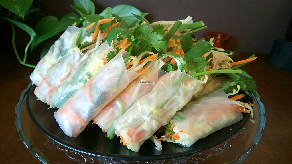 Photo of Thai Box Food  by THAIBOXfood <br/>Not fried vegetable rolls, vegan of course <br/> June 8, 2016  - <a href='/contact/abuse/image/40986/152883'>Report</a>
