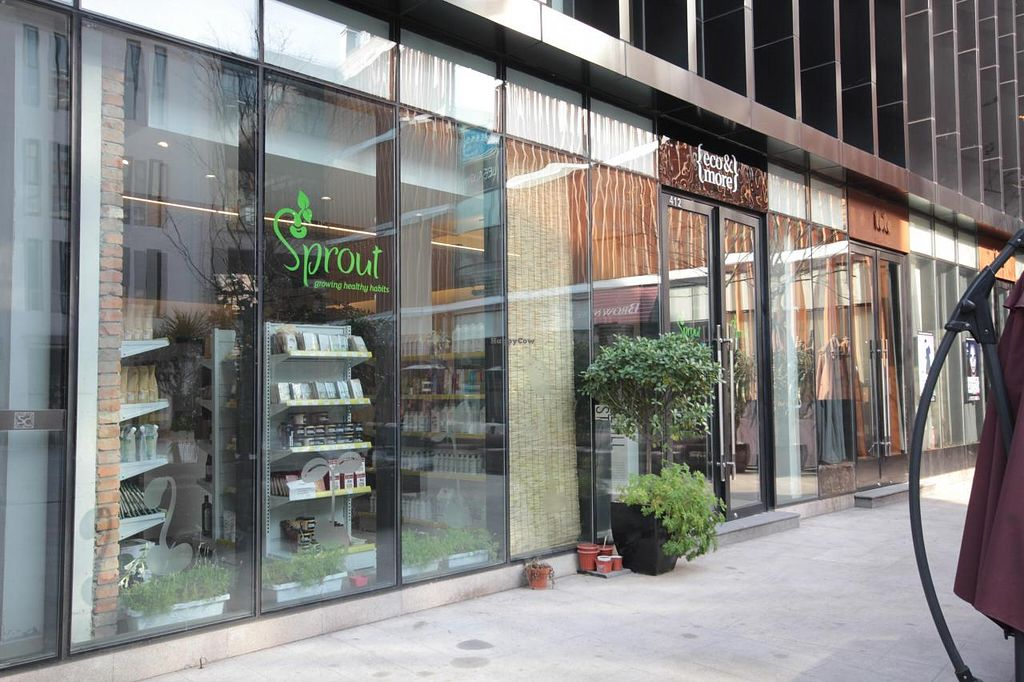 "Photo of CLOSED: Sprout Lifestyle Retail Store  by <a href=""/members/profile/Tianci"">Tianci</a> <br/>Sprout Lifestyle Store <br/> August 25, 2014  - <a href='/contact/abuse/image/41157/78187'>Report</a>"