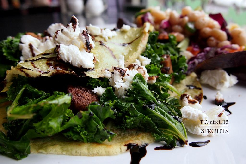 """Photo of Sprouts Cafe  by <a href=""""/members/profile/TammyCantrell"""">TammyCantrell</a> <br/>Mushroom Crepes! Herb infused crepes with savory filling of Grilled Mushrooms, Spinach, Red Onion & Kale with a Sprinkle of Goat and Feta Cheeses with Balsamic Reduction!  <br/> May 1, 2015  - <a href='/contact/abuse/image/41561/100822'>Report</a>"""