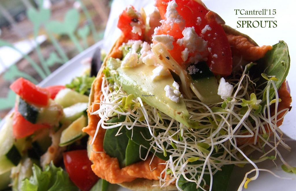 """Photo of Sprouts Cafe  by <a href=""""/members/profile/TammyCantrell"""">TammyCantrell</a> <br/> Red Pepper Hummus Wrap with Roasted Red Pepper Hummus with Crispy Greens, Fresh Avocado, Artichoke and Cucumber Salad, and Sprouts!  <br/> March 4, 2015  - <a href='/contact/abuse/image/41561/94864'>Report</a>"""