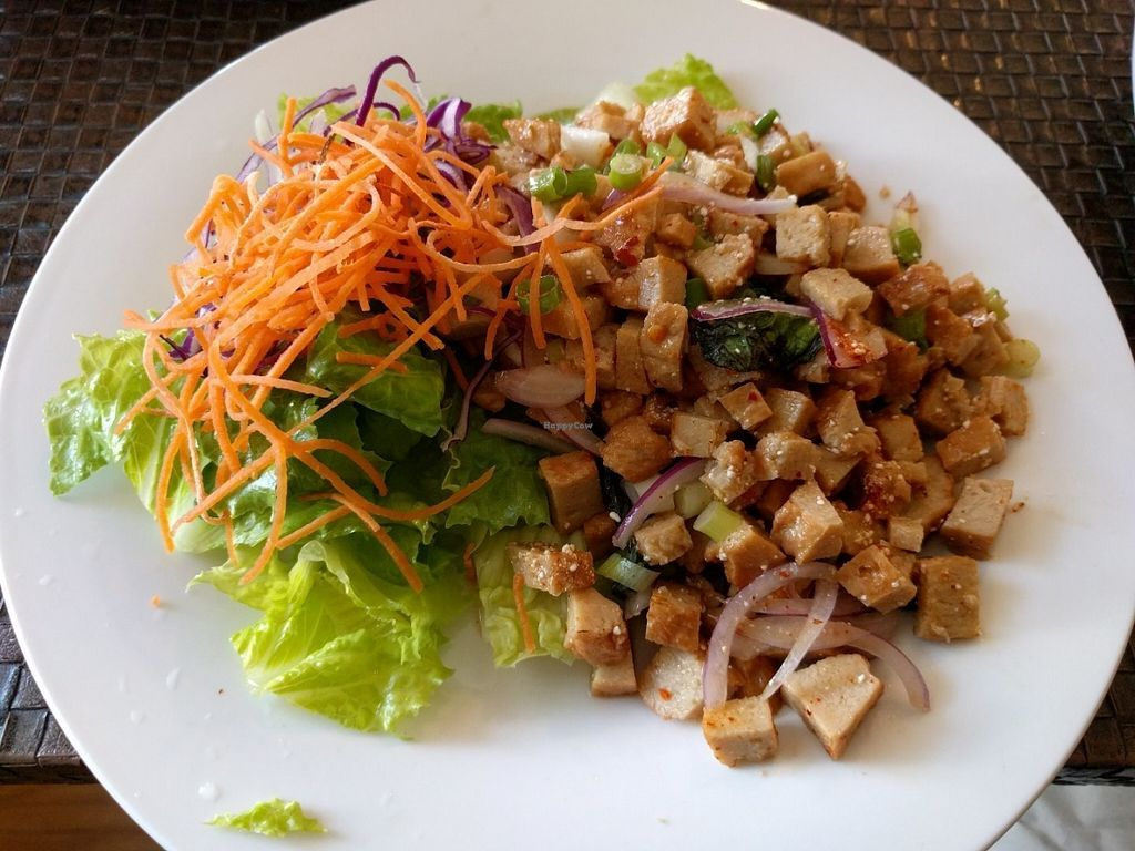 """Photo of Veggie House  by <a href=""""/members/profile/Sonja%20and%20Dirk"""">Sonja and Dirk</a> <br/>larb salad <br/> July 28, 2016  - <a href='/contact/abuse/image/41594/162806'>Report</a>"""