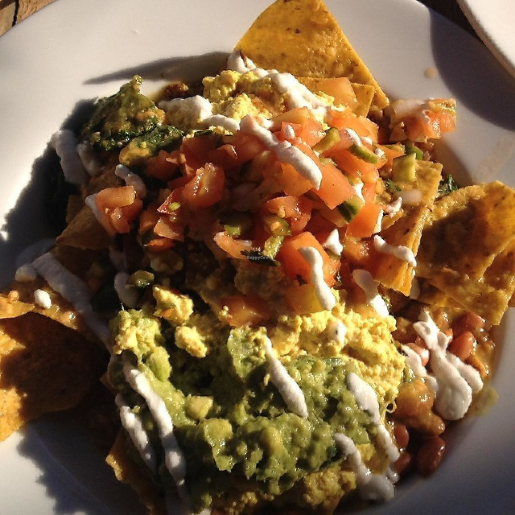 "Photo of Sage Vegan Bistro and KindKreme  by <a href=""/members/profile/JenniferKoukla"">JenniferKoukla</a> <br/>chilaquiles wow! <br/> January 17, 2015  - <a href='/contact/abuse/image/41615/188735'>Report</a>"
