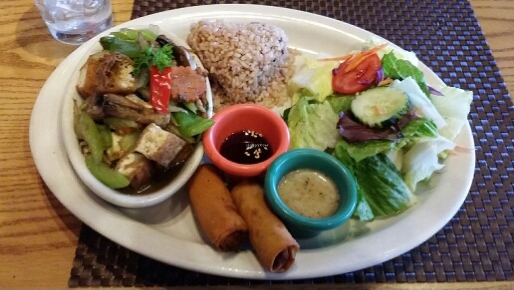 """Photo of CLOSED: Thai Vegan  by <a href=""""/members/profile/Michizzle1"""">Michizzle1</a> <br/>Ginger with tofu <br/> May 11, 2016  - <a href='/contact/abuse/image/41622/148547'>Report</a>"""