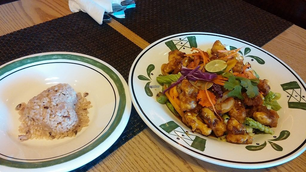 """Photo of CLOSED: Thai Vegan  by <a href=""""/members/profile/aliskydiver"""">aliskydiver</a> <br/>Orange """"Chicken"""" <br/> February 21, 2017  - <a href='/contact/abuse/image/41622/228948'>Report</a>"""