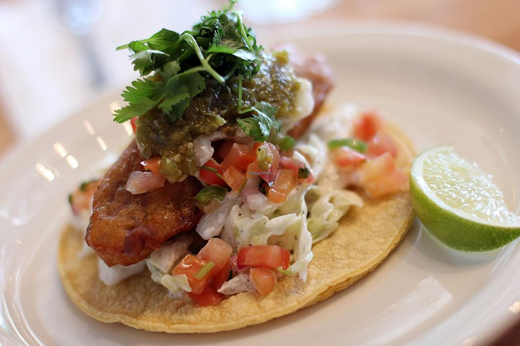 """Photo of My Vegan Gold  by <a href=""""/members/profile/veroaero"""">veroaero</a> <br/>Superb taco from My Vegan Gold <br/> August 20, 2014  - <a href='/contact/abuse/image/41660/77647'>Report</a>"""