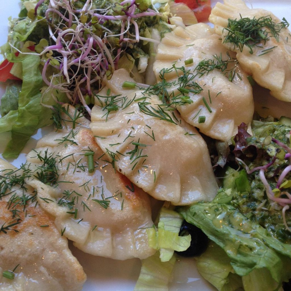 "Photo of Avocado Vegan Bistro - Wajdeloty  by <a href=""/members/profile/Vera%20Peres"">Vera Peres</a> <br/>Pierogi Ruskie  <br/> June 2, 2015  - <a href='/contact/abuse/image/41675/104544'>Report</a>"