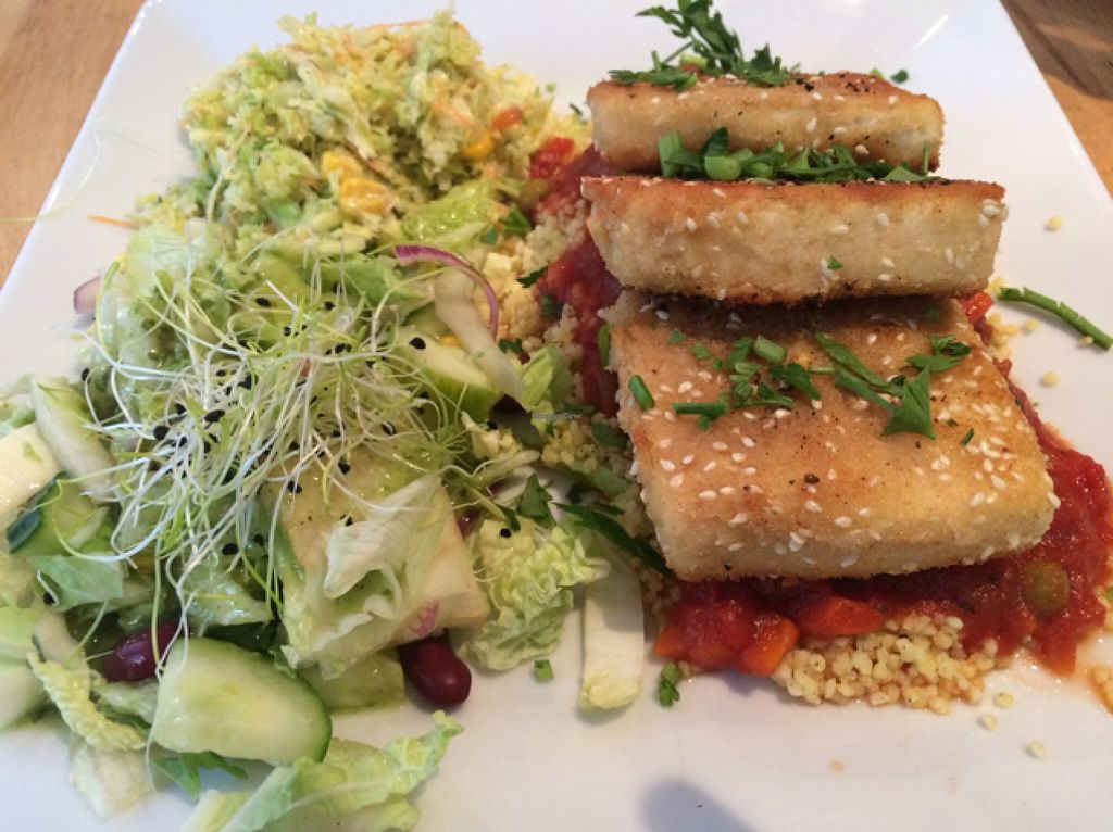 "Photo of Avocado Vegan Bistro - Wajdeloty  by <a href=""/members/profile/Beaa"">Beaa</a> <br/>tofu <br/> November 13, 2015  - <a href='/contact/abuse/image/41675/124878'>Report</a>"