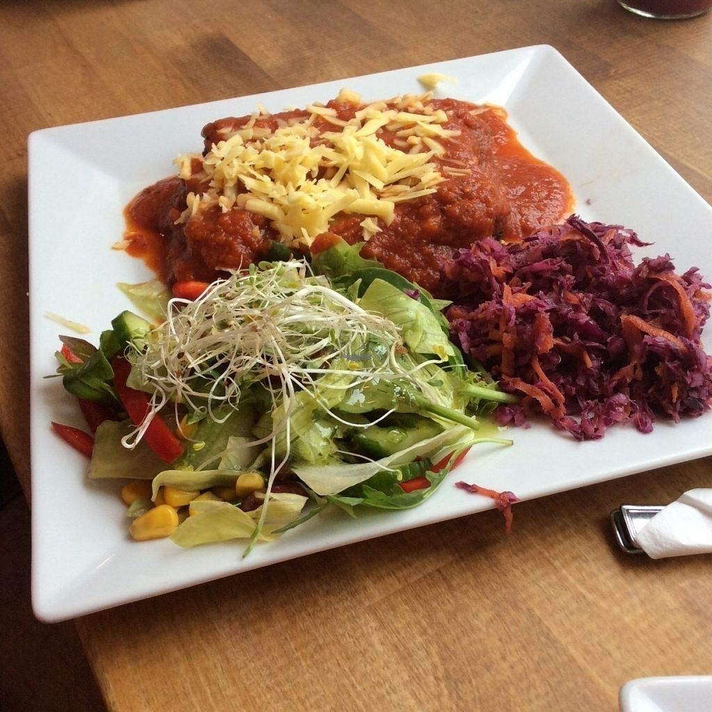 "Photo of Avocado Vegan Bistro - Wajdeloty  by <a href=""/members/profile/AgataAgathe"">AgataAgathe</a> <br/>Cannelloni <br/> August 8, 2016  - <a href='/contact/abuse/image/41675/166956'>Report</a>"