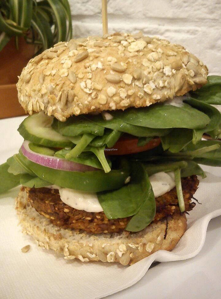 "Photo of Avocado Vegan Bistro - Wajdeloty  by <a href=""/members/profile/FernandoMoreira"">FernandoMoreira</a> <br/>millet burger <br/> October 16, 2017  - <a href='/contact/abuse/image/41675/315931'>Report</a>"