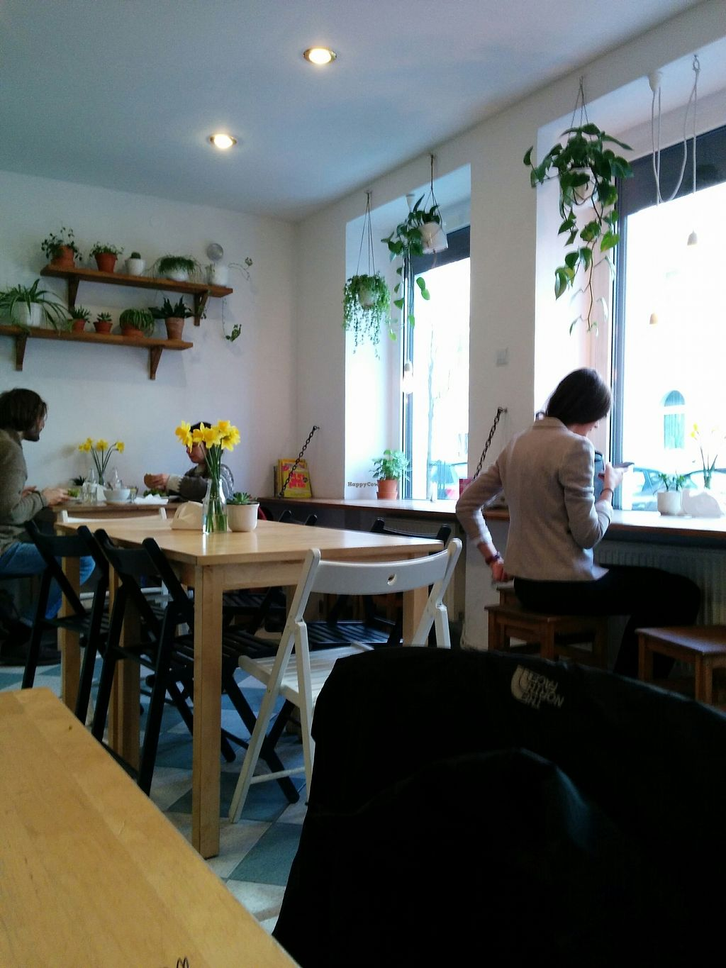 "Photo of Avocado Vegan Bistro - Wajdeloty  by <a href=""/members/profile/CLRtraveller"">CLRtraveller</a> <br/>interior <br/> February 24, 2018  - <a href='/contact/abuse/image/41675/363156'>Report</a>"