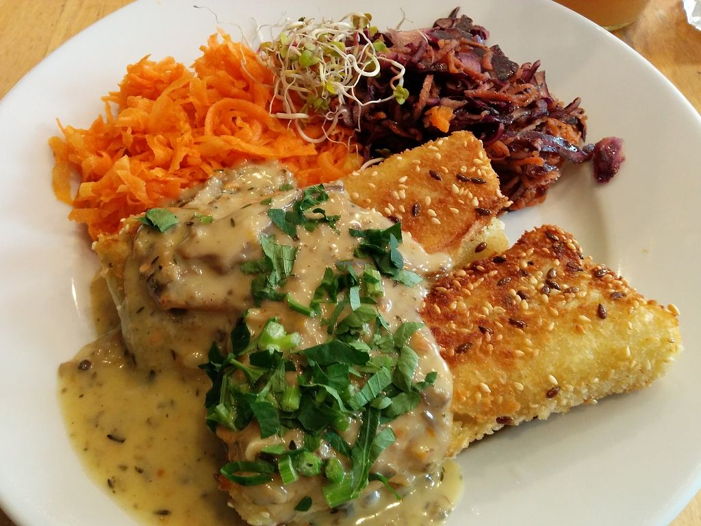"Photo of Avocado Vegan Bistro - Wajdeloty  by <a href=""/members/profile/CLRtraveller"">CLRtraveller</a> <br/>croquettes with mushroom sauce (gravy) <br/> February 24, 2018  - <a href='/contact/abuse/image/41675/363157'>Report</a>"