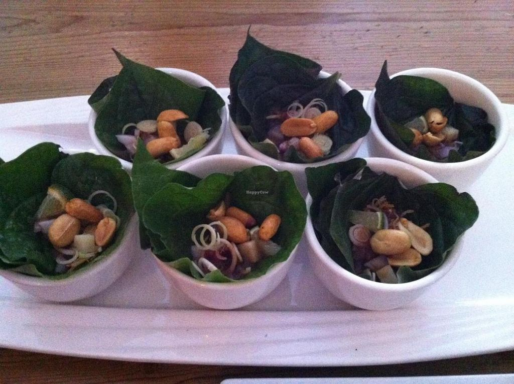 """Photo of Bob likes Thai Food  by <a href=""""/members/profile/vegan%20frog"""">vegan frog</a> <br/>MIANG KHAM <br/> September 7, 2014  - <a href='/contact/abuse/image/41686/79352'>Report</a>"""