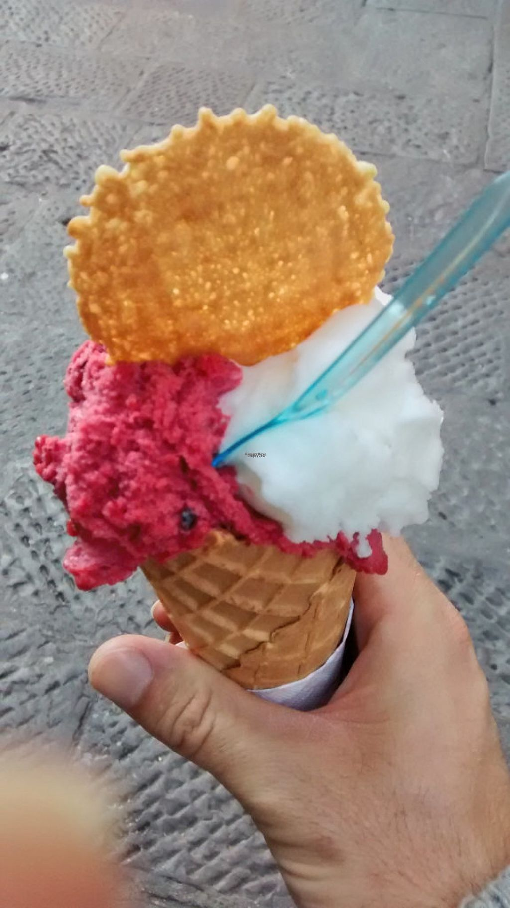 "Photo of Festival del Gelato  by <a href=""/members/profile/JonJon"">JonJon</a> <br/>Vegan ice cream (red fruits and lemon) <br/> November 3, 2016  - <a href='/contact/abuse/image/41696/186373'>Report</a>"