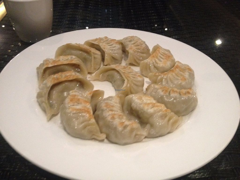 "Photo of CLOSED: Xinxiang Sushijie - Vegetarian World  by <a href=""/members/profile/vegan_ryan"">vegan_ryan</a> <br/>Fried dumplings <br/> June 22, 2016  - <a href='/contact/abuse/image/42068/155409'>Report</a>"