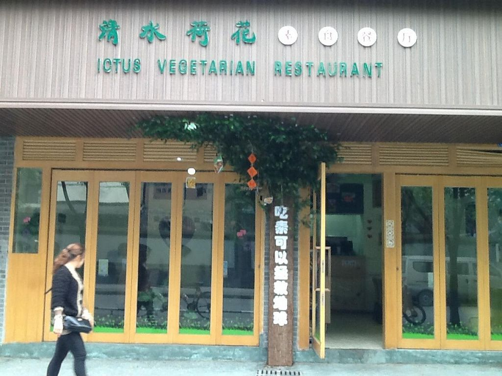 """Photo of Ching Shui Lian Hua - Lotus Vegetarian  by <a href=""""/members/profile/papajonquinn"""">papajonquinn</a> <br/>Lotus Vegetarian on Guojiaqiao North St <br/> April 8, 2014  - <a href='/contact/abuse/image/42069/67259'>Report</a>"""