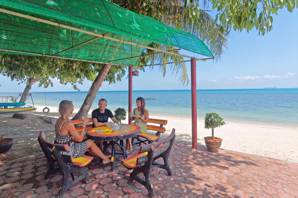 "Photo of Health Oasis Resort  by <a href=""/members/profile/HealthOasisResort"">HealthOasisResort</a> <br/>outdoor beachfront eating area  <br/> July 22, 2016  - <a href='/contact/abuse/image/4210/161533'>Report</a>"