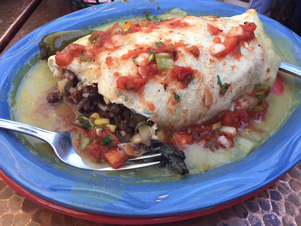 """Photo of Oscar's Cafe  by <a href=""""/members/profile/jamiecroteau"""">jamiecroteau</a> <br/>Sautéed Veggie Burrito (Vegan and Baked) <br/> April 11, 2017  - <a href='/contact/abuse/image/42156/246858'>Report</a>"""