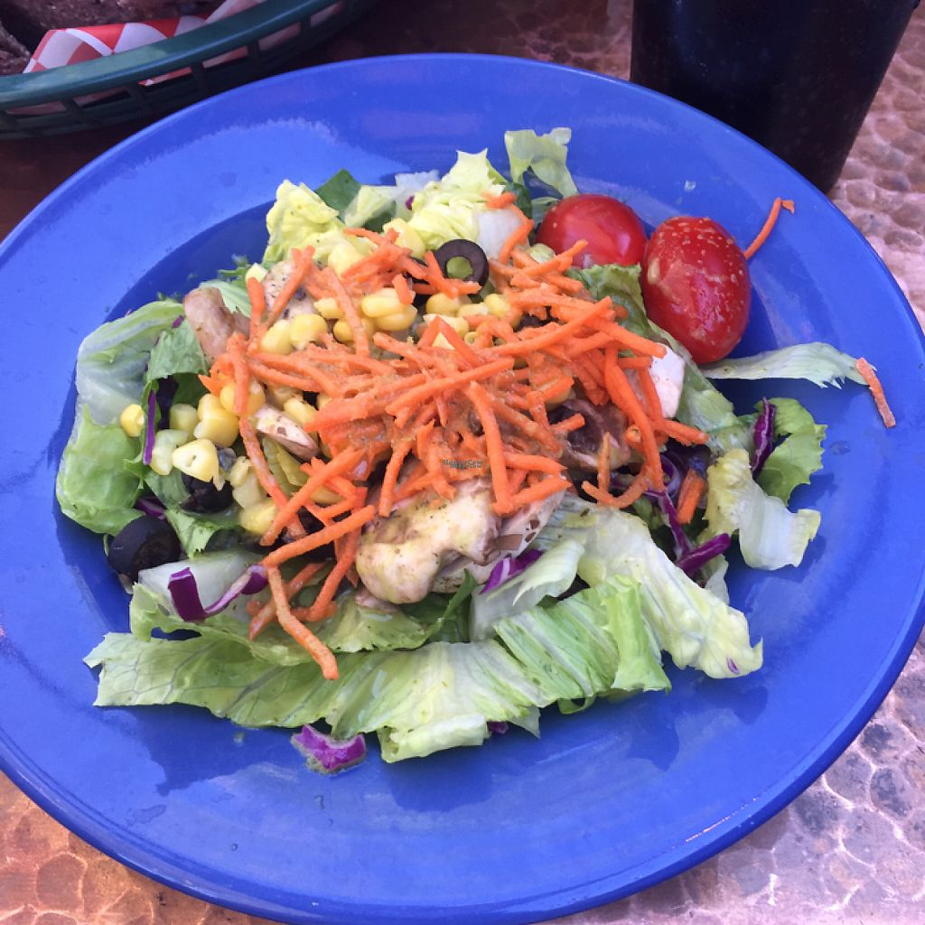 """Photo of Oscar's Cafe  by <a href=""""/members/profile/jamiecroteau"""">jamiecroteau</a> <br/>Side Salad with House Vinaigrette  <br/> April 11, 2017  - <a href='/contact/abuse/image/42156/246859'>Report</a>"""