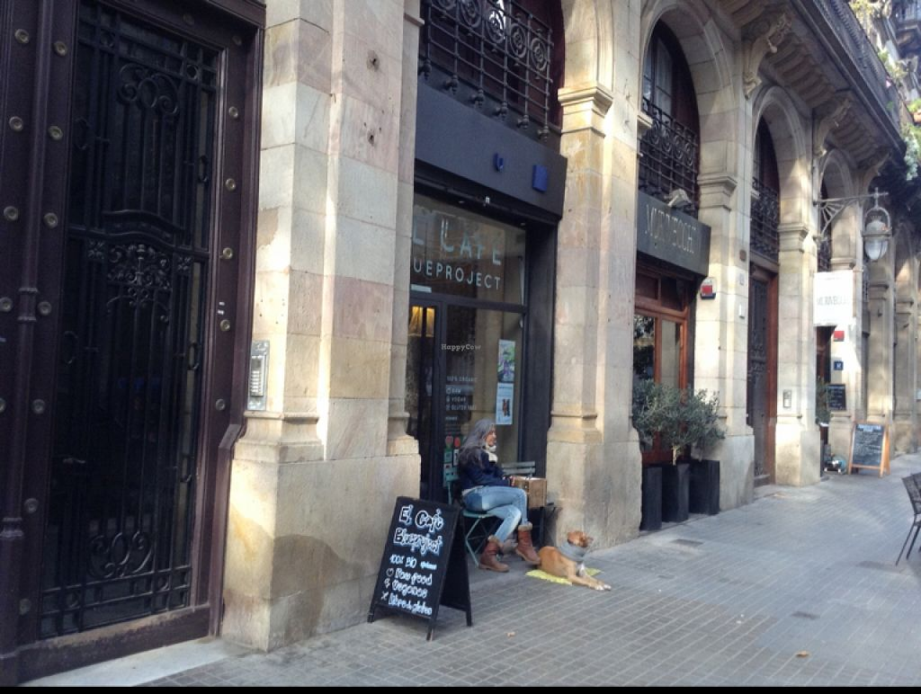 """Photo of El Cafe Blueproject  by <a href=""""/members/profile/hack_man"""">hack_man</a> <br/>Outside <br/> December 2, 2015  - <a href='/contact/abuse/image/42332/126921'>Report</a>"""