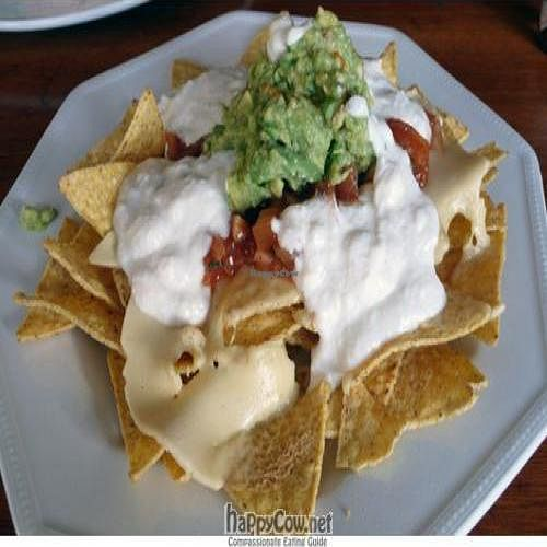 """Photo of CLOSED: POGO Cafe  by <a href=""""/members/profile/quarrygirl"""">quarrygirl</a> <br/>pogo cafe vegan nacho plate <br/> June 13, 2009  - <a href='/contact/abuse/image/4238/2042'>Report</a>"""