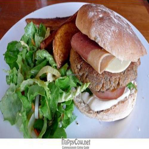 """Photo of CLOSED: POGO Cafe  by <a href=""""/members/profile/quarrygirl"""">quarrygirl</a> <br/>pogo cafe vegan punk burger with side salad and potatoes <br/> June 13, 2009  - <a href='/contact/abuse/image/4238/2043'>Report</a>"""