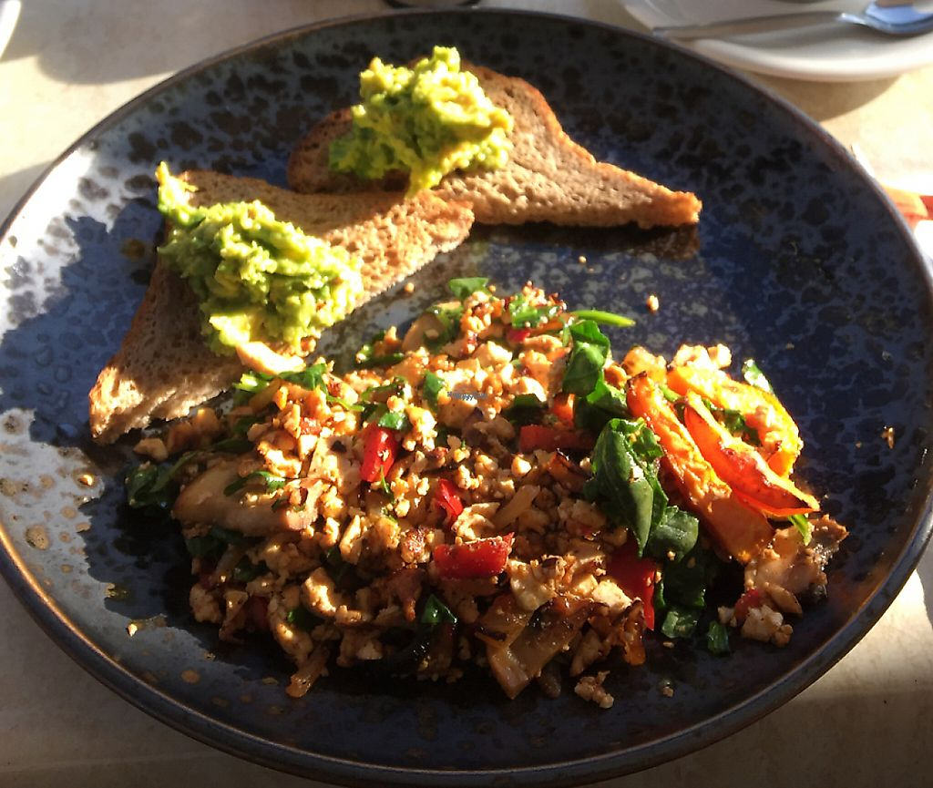 "Photo of Invita Living Food  by <a href=""/members/profile/siljebergen"">siljebergen</a> <br/>Tofu scramble and soy cappuccino <br/> April 18, 2017  - <a href='/contact/abuse/image/42472/260167'>Report</a>"