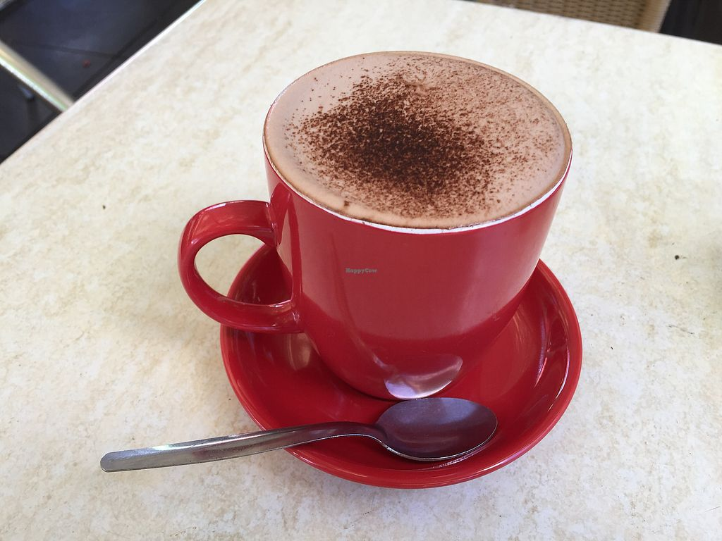 """Photo of Invita Living Food  by <a href=""""/members/profile/Wuji_Luiji"""">Wuji_Luiji</a> <br/>Large vegan hot chocolate (with soy mylk) <br/> December 8, 2017  - <a href='/contact/abuse/image/42472/333289'>Report</a>"""
