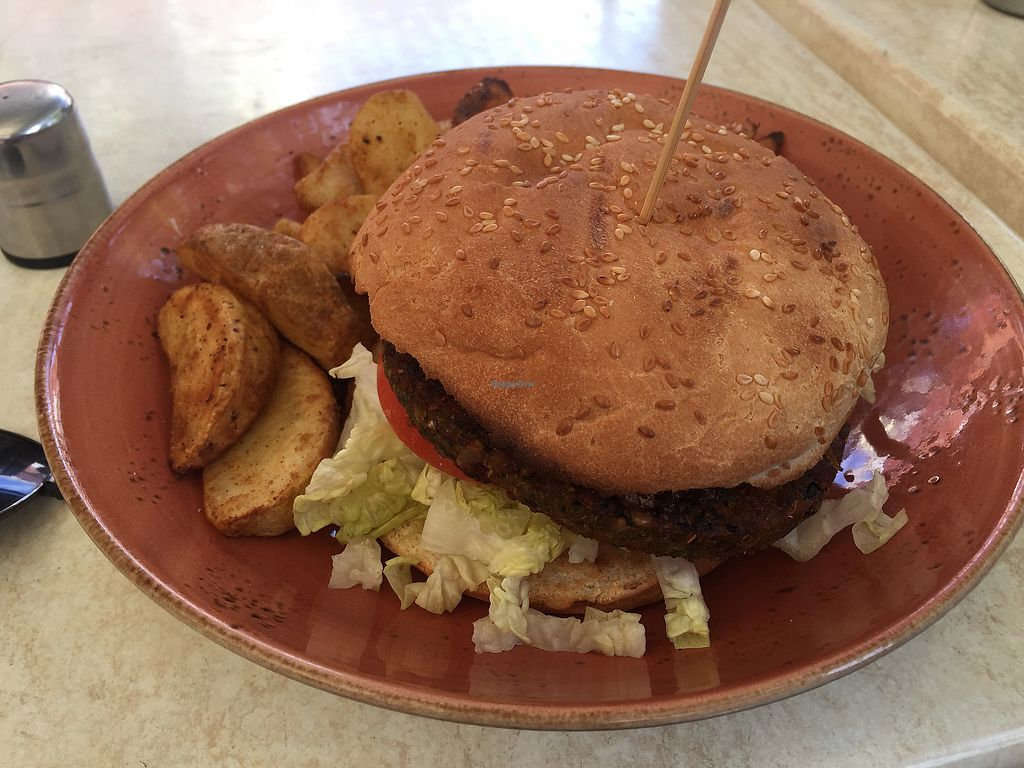 """Photo of Invita Living Food  by <a href=""""/members/profile/Tiggy"""">Tiggy</a> <br/>Vegan burger (chutney only condiment) and potato wedges (no dipping sauce) <br/> April 28, 2018  - <a href='/contact/abuse/image/42472/392114'>Report</a>"""