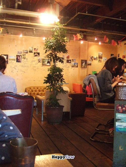 Photo of Yamaneko Cafe  by tblois <br/>Yamaneko Interior <br/> October 29, 2013  - <a href='/contact/abuse/image/42529/57572'>Report</a>