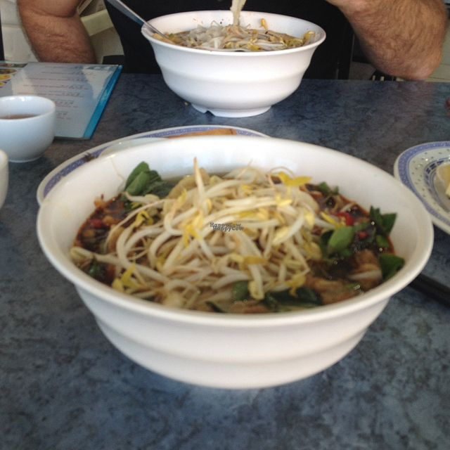 "Photo of World Vegan  by <a href=""/members/profile/TammaraVisser"">TammaraVisser</a> <br/>Amazingly yummy Pho <br/> October 6, 2016  - <a href='/contact/abuse/image/42559/180044'>Report</a>"