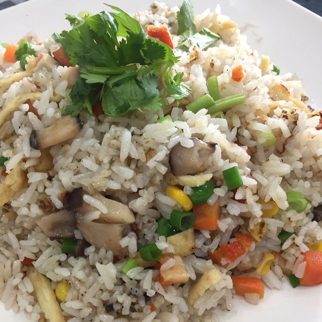 "Photo of World Vegan  by <a href=""/members/profile/leonardhall"">leonardhall</a> <br/>fried rice <br/> December 23, 2016  - <a href='/contact/abuse/image/42559/204288'>Report</a>"