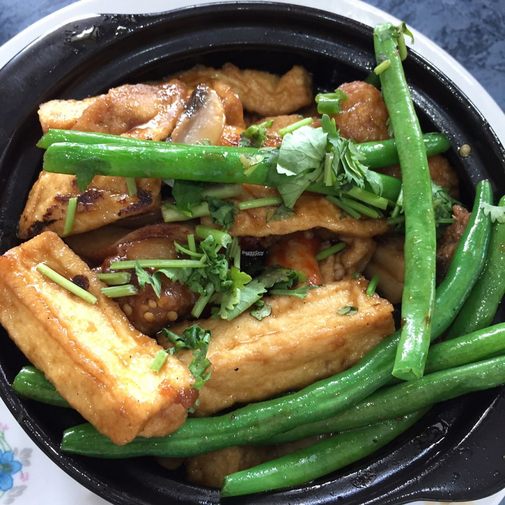 "Photo of World Vegan  by <a href=""/members/profile/leonardhall"">leonardhall</a> <br/>clay pot eggplant <br/> March 3, 2017  - <a href='/contact/abuse/image/42559/232044'>Report</a>"