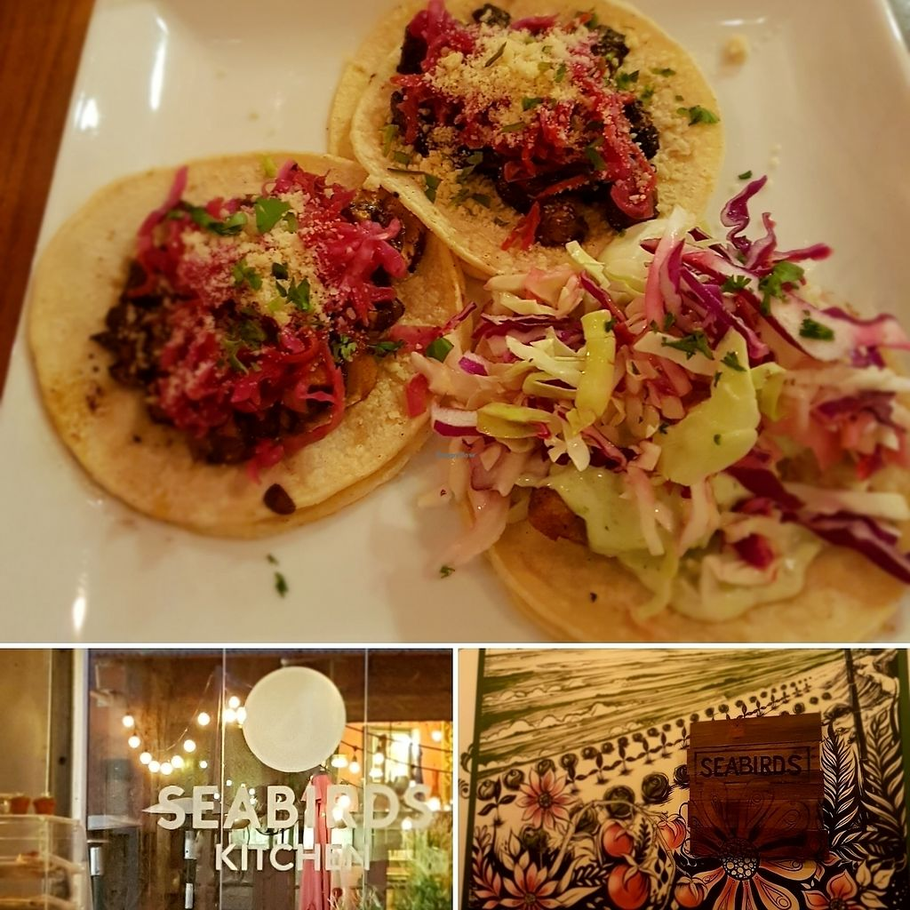 """Photo of Seabirds Kitchen  by <a href=""""/members/profile/AmberBug"""">AmberBug</a> <br/>a marinated mushroom and a beer battered avocado taco <br/> July 6, 2017  - <a href='/contact/abuse/image/42600/277178'>Report</a>"""
