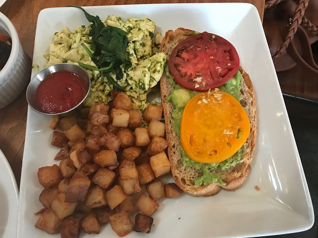 """Photo of Seabirds Kitchen  by <a href=""""/members/profile/Bex2017"""">Bex2017</a> <br/>Green Eggs & Avo Toast <br/> September 17, 2017  - <a href='/contact/abuse/image/42600/305428'>Report</a>"""