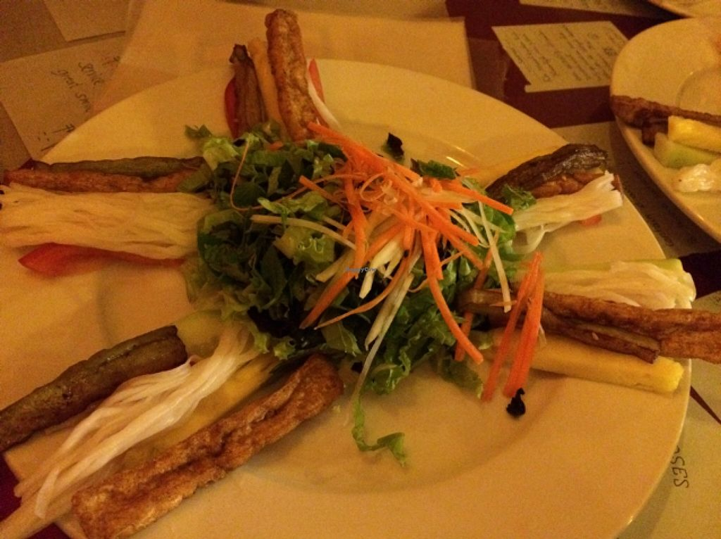 """Photo of Aubergine Cafe  by <a href=""""/members/profile/Siup"""">Siup</a> <br/>spring rolls filling <br/> December 15, 2015  - <a href='/contact/abuse/image/42628/128554'>Report</a>"""
