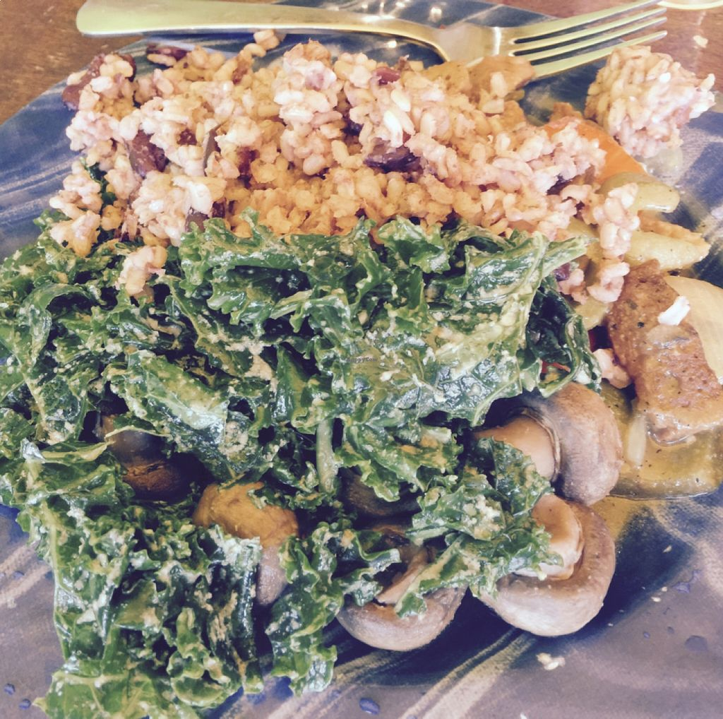 """Photo of Kale Cafe  by <a href=""""/members/profile/gwild"""">gwild</a> <br/>vegan plate <br/> August 22, 2015  - <a href='/contact/abuse/image/42862/114677'>Report</a>"""