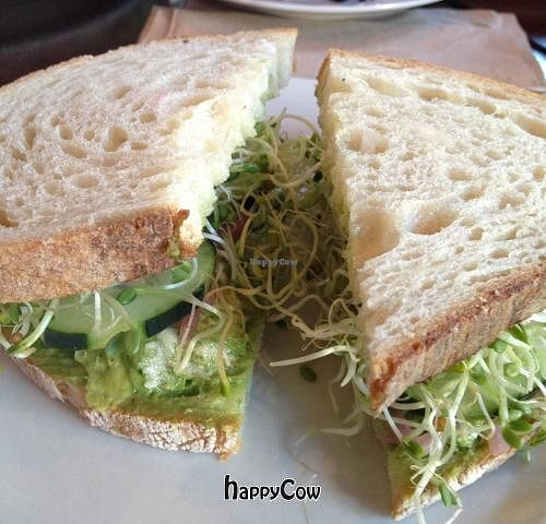 """Photo of CLOSED: Chaco Canyon Organic Cafe - University District  by <a href=""""/members/profile/thefabster"""">thefabster</a> <br/>Avocado sandwich  <br/> March 26, 2013  - <a href='/contact/abuse/image/4291/46039'>Report</a>"""