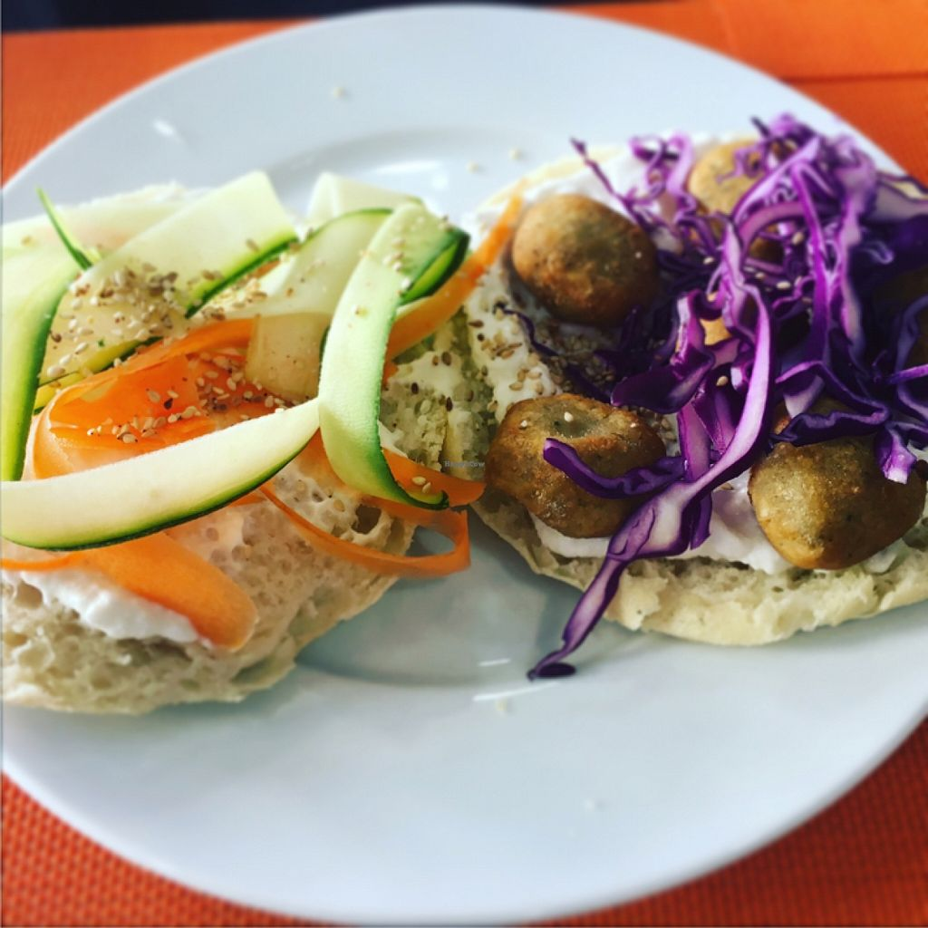 """Photo of Plaer Vegetaria  by <a href=""""/members/profile/PatrickBolk"""">PatrickBolk</a> <br/>Falafel <br/> April 11, 2016  - <a href='/contact/abuse/image/42932/143868'>Report</a>"""