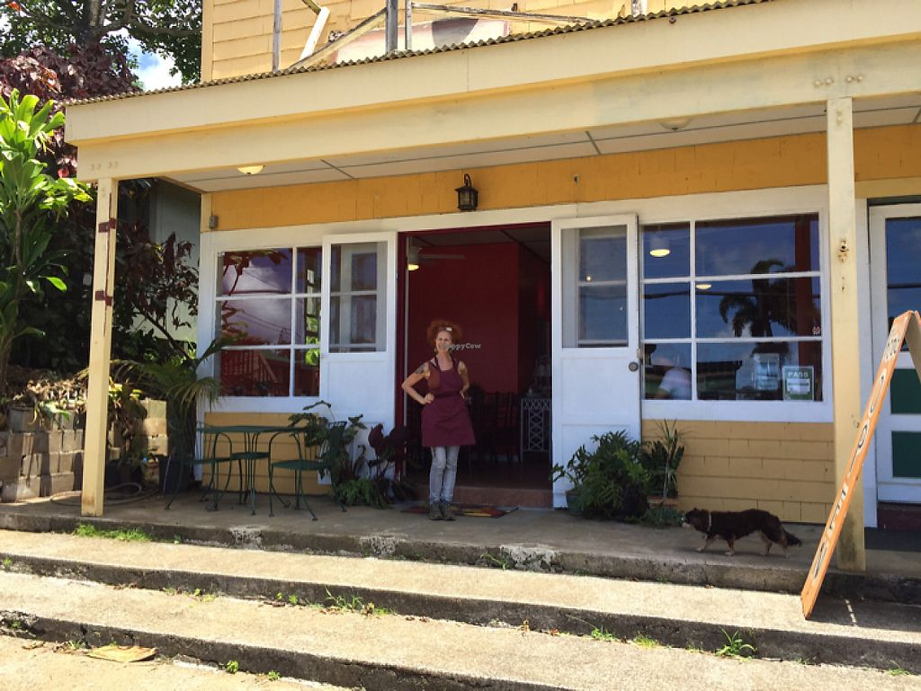 """Photo of Sweet Potato Kitchen  by <a href=""""/members/profile/Jivaka"""">Jivaka</a> <br/>Sweet Potato cafe new location- 2 door to the east. Ruth owner in doorway.  <br/> May 21, 2017  - <a href='/contact/abuse/image/43127/261008'>Report</a>"""
