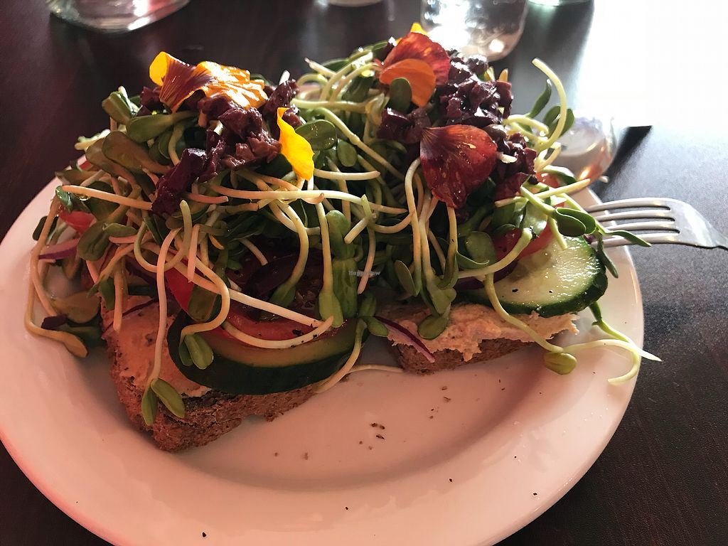 """Photo of Sweet Potato Kitchen  by <a href=""""/members/profile/KathyCatlin"""">KathyCatlin</a> <br/>Hummus Tartine Sandwich  <br/> February 18, 2018  - <a href='/contact/abuse/image/43127/361083'>Report</a>"""