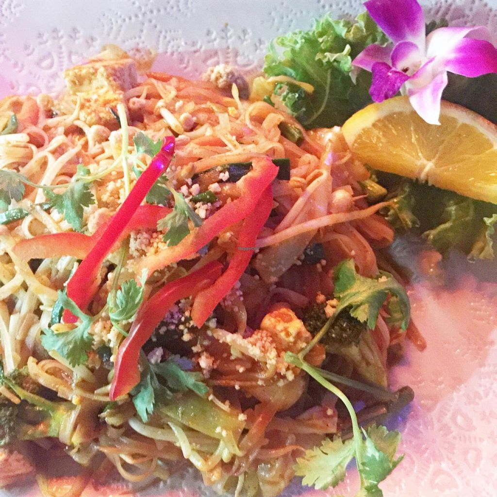 "Photo of Thai House  by <a href=""/members/profile/SarahKirby"">SarahKirby</a> <br/>Vegan Pad Thai  <br/> May 9, 2015  - <a href='/contact/abuse/image/43128/101749'>Report</a>"