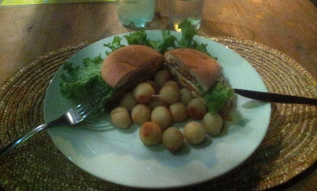 """Photo of Barra 7  by <a href=""""/members/profile/Eric%20Rem"""">Eric Rem</a> <br/>One of the nice dishes. A vegetarian burger with fried potatoes <br/> January 9, 2016  - <a href='/contact/abuse/image/43180/131654'>Report</a>"""