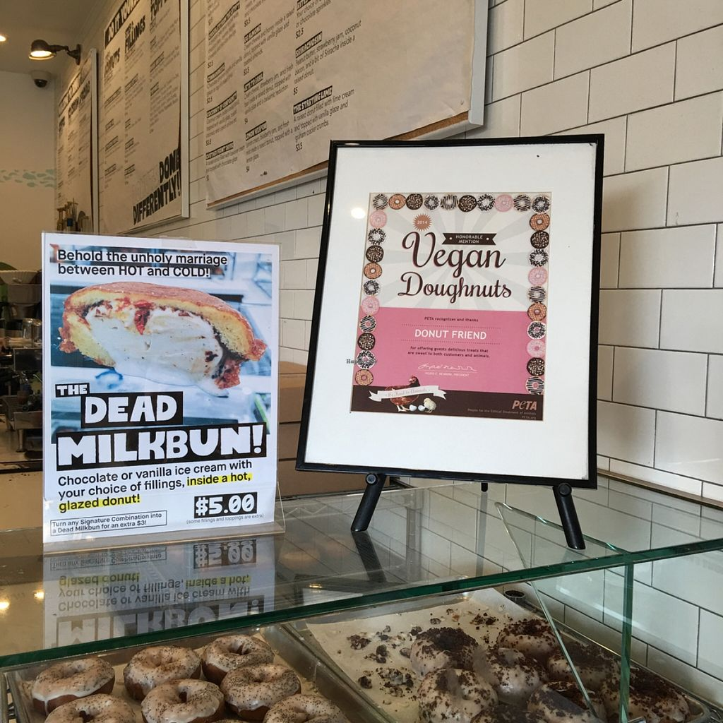"""Photo of Donut Friend  by <a href=""""/members/profile/xmrfigx"""">xmrfigx</a> <br/>PETA certified vegan donuts <br/> May 1, 2016  - <a href='/contact/abuse/image/43258/147034'>Report</a>"""