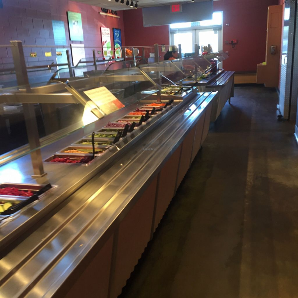 """Photo of Sweet Tomatoes  by <a href=""""/members/profile/ScottElswick"""">ScottElswick</a> <br/>salad <br/> February 25, 2016  - <a href='/contact/abuse/image/43294/137799'>Report</a>"""