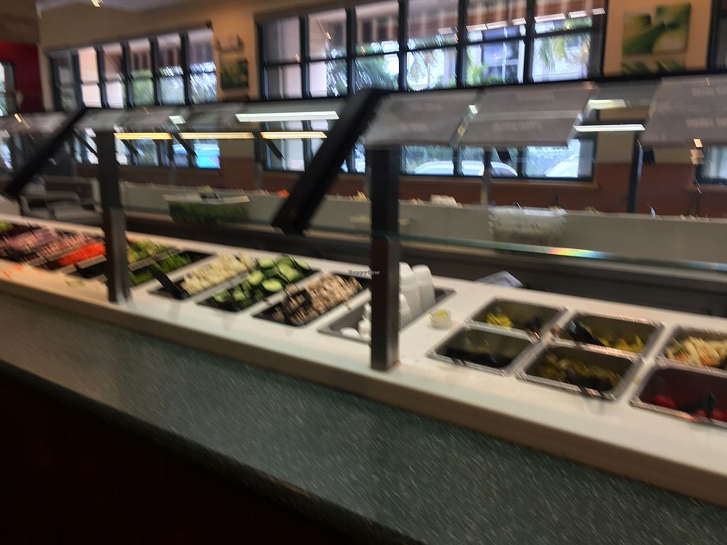 """Photo of Sweet Tomatoes  by <a href=""""/members/profile/GMUGrad2002"""">GMUGrad2002</a> <br/>Salad bar <br/> July 8, 2017  - <a href='/contact/abuse/image/43299/277952'>Report</a>"""