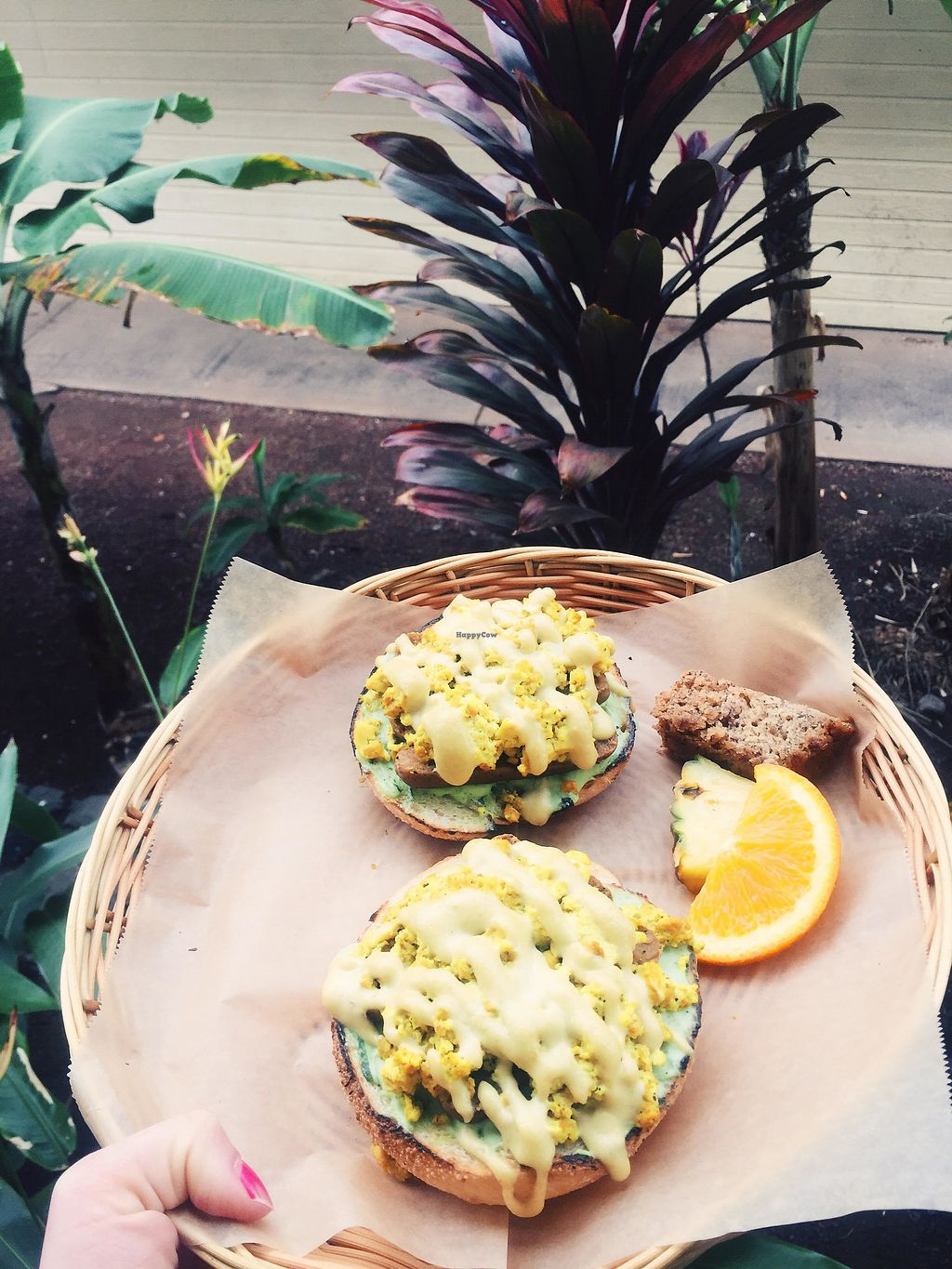 """Photo of Evolution Bakery and Cafe  by <a href=""""/members/profile/Stephaneen"""">Stephaneen</a> <br/>Buddha on a herb bagel <br/> March 21, 2018  - <a href='/contact/abuse/image/43352/373528'>Report</a>"""