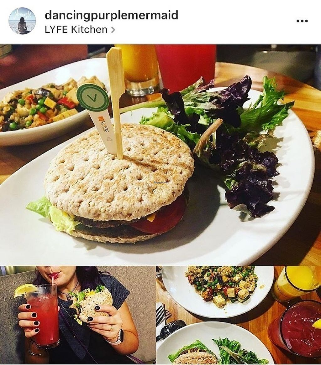 """Photo of LYFE Kitchen - River North  by <a href=""""/members/profile/Dancingpurplemermaid"""">Dancingpurplemermaid</a> <br/>Sandwich and Salad <br/> May 31, 2017  - <a href='/contact/abuse/image/43440/264531'>Report</a>"""