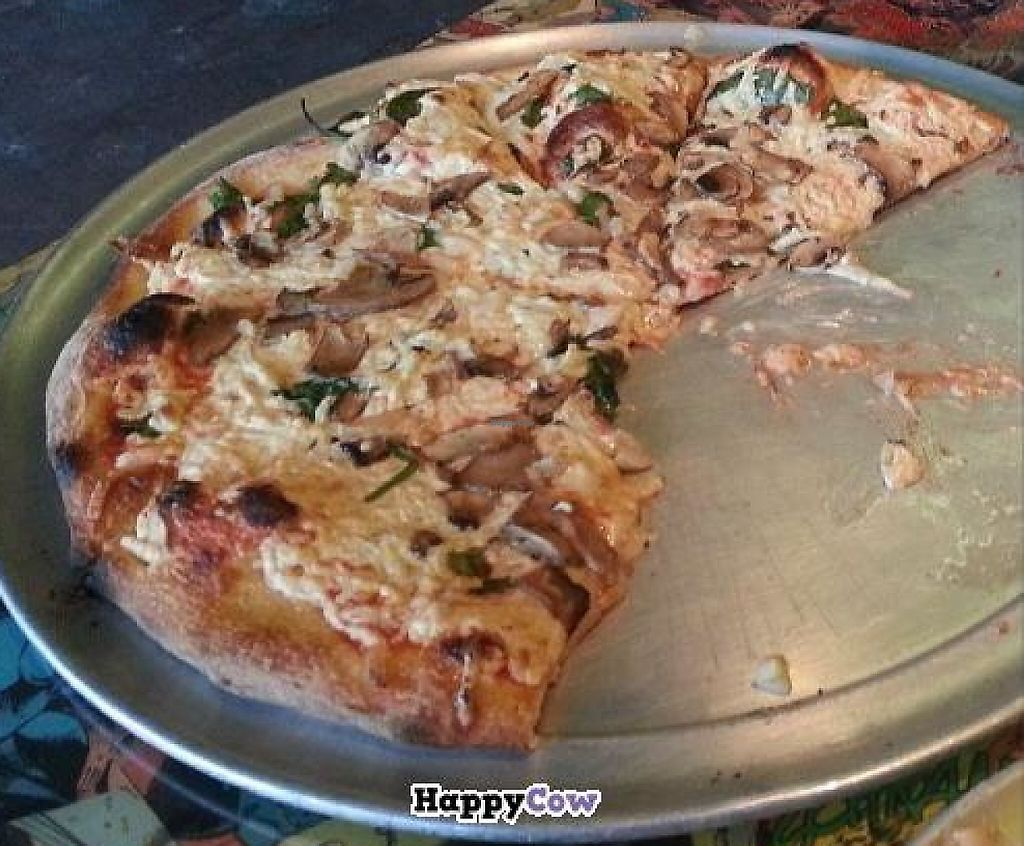 """Photo of Gaines Street Pies  by <a href=""""/members/profile/Gabrielle850"""">Gabrielle850</a> <br/>Vegan chz, mushrooms, garlic, and spinach  <br/> November 25, 2013  - <a href='/contact/abuse/image/43441/197577'>Report</a>"""